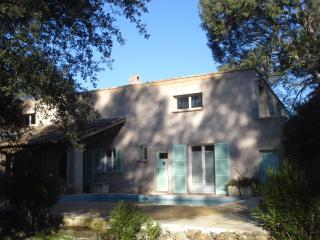 Eucalyptus B&B Blue Room - Lorgues vacation rentals