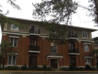 Downtown Aiken SC Condominium - Aiken vacation rentals