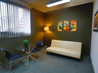 Business studio in great location in Miraflores - Lima vacation rentals
