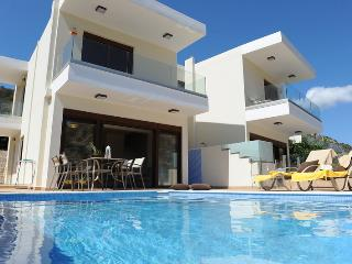 Paris Villas - Pitsidia vacation rentals