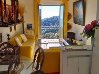 Galletti, Panoramic view with garden and parking - Liguria vacation rentals