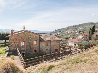 Villa Among Olive Trees in hills outside Lucca - Lappato vacation rentals