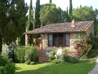 Lovely apartment in a small winery - Castellina In Chianti vacation rentals