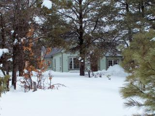 Peaceful, Quiet, yet close to Everything - Pagosa Springs vacation rentals