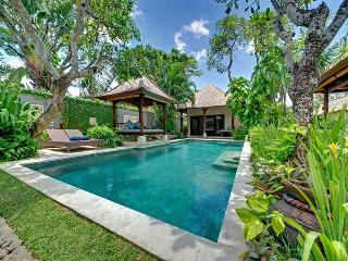 Villa Kedidi - an elite haven - Canggu vacation rentals