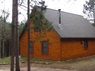 Cabin - Northwest Michigan vacation rentals