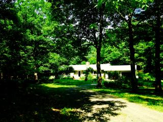 Rhinebeck Retreat - Rhinebeck vacation rentals