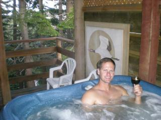 Cozy Shangrila - Ski and Hot Tub - Stateline vacation rentals