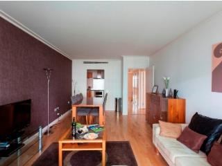 Super deluxe 2bed/2bath river-side apartment - London vacation rentals