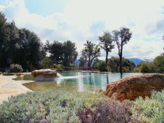 Holiday home Il Corbezzolo with Infinity pool - San Gimignano vacation rentals