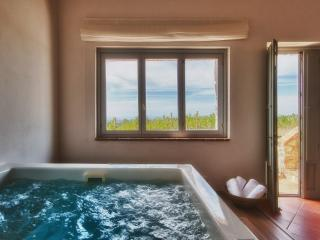 Relais Chianti - Greve in Chianti vacation rentals