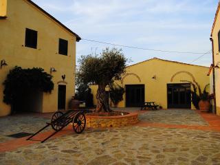 IL TORRIANO - Montefiridolfi vacation rentals