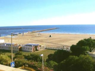 10 meters from the beach one bedroom Apartment - Praia da Rocha vacation rentals