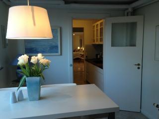 Stor lejlighed i Roskilde - Roskilde vacation rentals