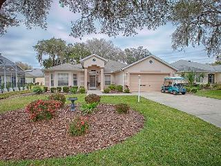 Gorgeous 3 bedroom designer home with a huge lanai and park view privacy - Ocala vacation rentals