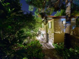 Eressos Village Amazing Rose Garden House! - Eresos vacation rentals