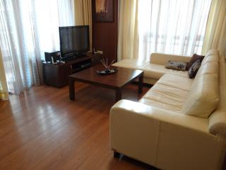 ApartmentsCarrera - Sofia vacation rentals