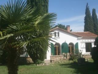 Provencal Villa in the Enclave of the Popes - Valreas vacation rentals