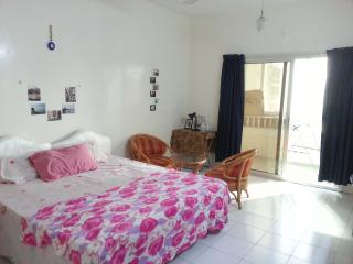 LONG STAY WITH ECONOMIC AND HOMELY - Dubai vacation rentals