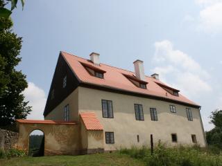 Historical Villa in Spa region - Plana u Marianskych Lazni vacation rentals