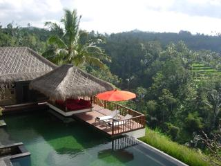 Tranquil,luxury 5 bedrooms Resort and Spa in Ubud - Ubud vacation rentals