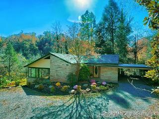 JT's Jungle - Gatlinburg vacation rentals