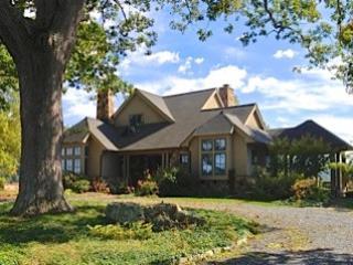 Riverfront Farm/Mountain Estate - Warm Springs vacation rentals
