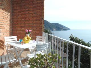 Beautiful apartment in Corniglia, CinqueTerre - Corniglia vacation rentals