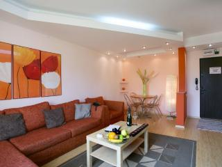 Grand Accommodation - Twin 2 Aparment - Bucharest vacation rentals