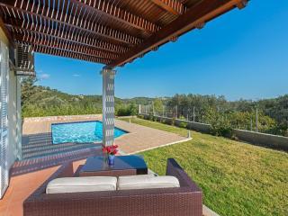 Seven Springs Ermis Villa - Kolimbia vacation rentals