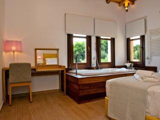 King size villas - Kolios vacation rentals