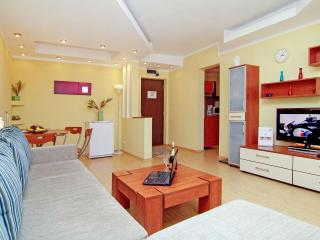 Grand Accommodation - Twin 3 Apartment - Bucharest vacation rentals