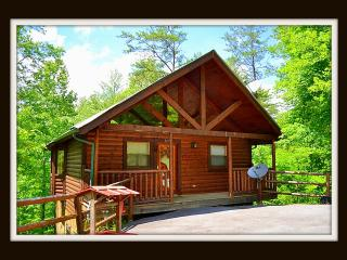 Stay at The Hiking Bear minutes to Pigeon Forge - Sevier County vacation rentals