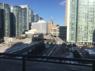 Bright downtown condo - walk to all attractions - Toronto vacation rentals