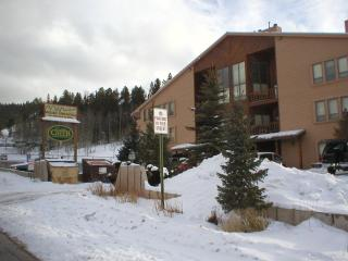 Angel Fire Condo by the slopes - New Mexico vacation rentals