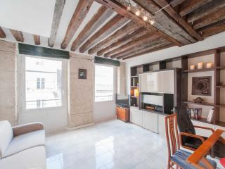 1 Bedroom Apartment at Rue St. Honore - Ile-de-France (Paris Region) vacation rentals