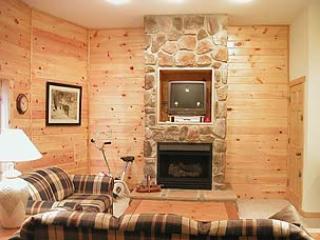 Cedar Shores #12 - Image 1 - McHenry - rentals
