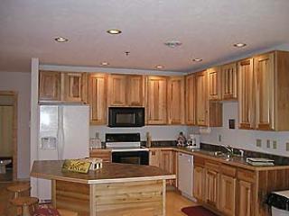 Cedar Shores #17 - Image 1 - McHenry - rentals