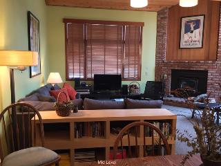 Sunny 3 Story Townhome #319-Plus 30% Off - High Sierra vacation rentals