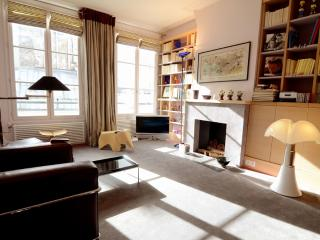 Modern 1 Bedroom Vacation Apt Near Musée d'Orsay - Ile-de-France (Paris Region) vacation rentals