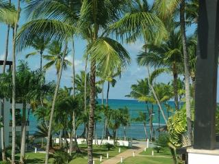 Ocean views - Two bedrooms penthouse with Jacuzzi - Las Terrenas vacation rentals