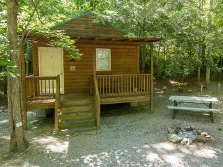 Camping Cabin /Pet Friendly/FUN FOR ENTIRE FAMILY! - Gatlinburg vacation rentals