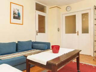 Cozy apartment in Sarajevo - Bosnia and Herzegovina vacation rentals
