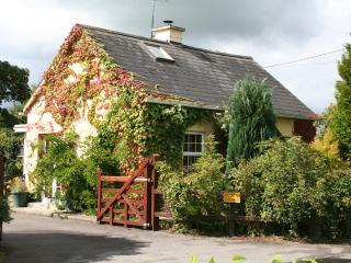 Coopers Cottage - Cahir vacation rentals