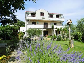 00418ZATZ A1(2) - Zaton (Zadar) - Privlaka vacation rentals