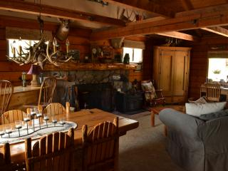 Beautiful secluded log cabin in Pikes Peak region - Lake George vacation rentals
