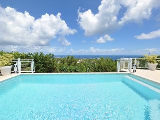 2 Bedroom Villa with Ocean View on the Hillside of Marigot - Marigot vacation rentals