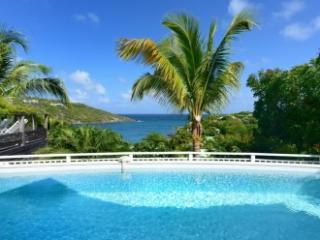 Modern 3 Bedroom Villa with Ocean View in Marigot - Saint Barthelemy vacation rentals