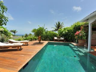Chic 1 Bedroom Villa in Marigot - Marigot vacation rentals