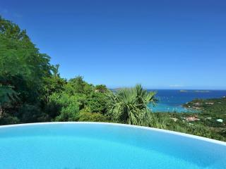 Perfect 3 Bedroom Villa on the Hillside of Saint Jean - Saint Jean vacation rentals